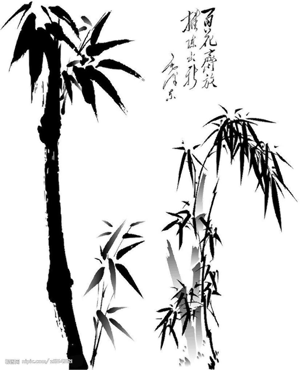 竹子石头矢量图