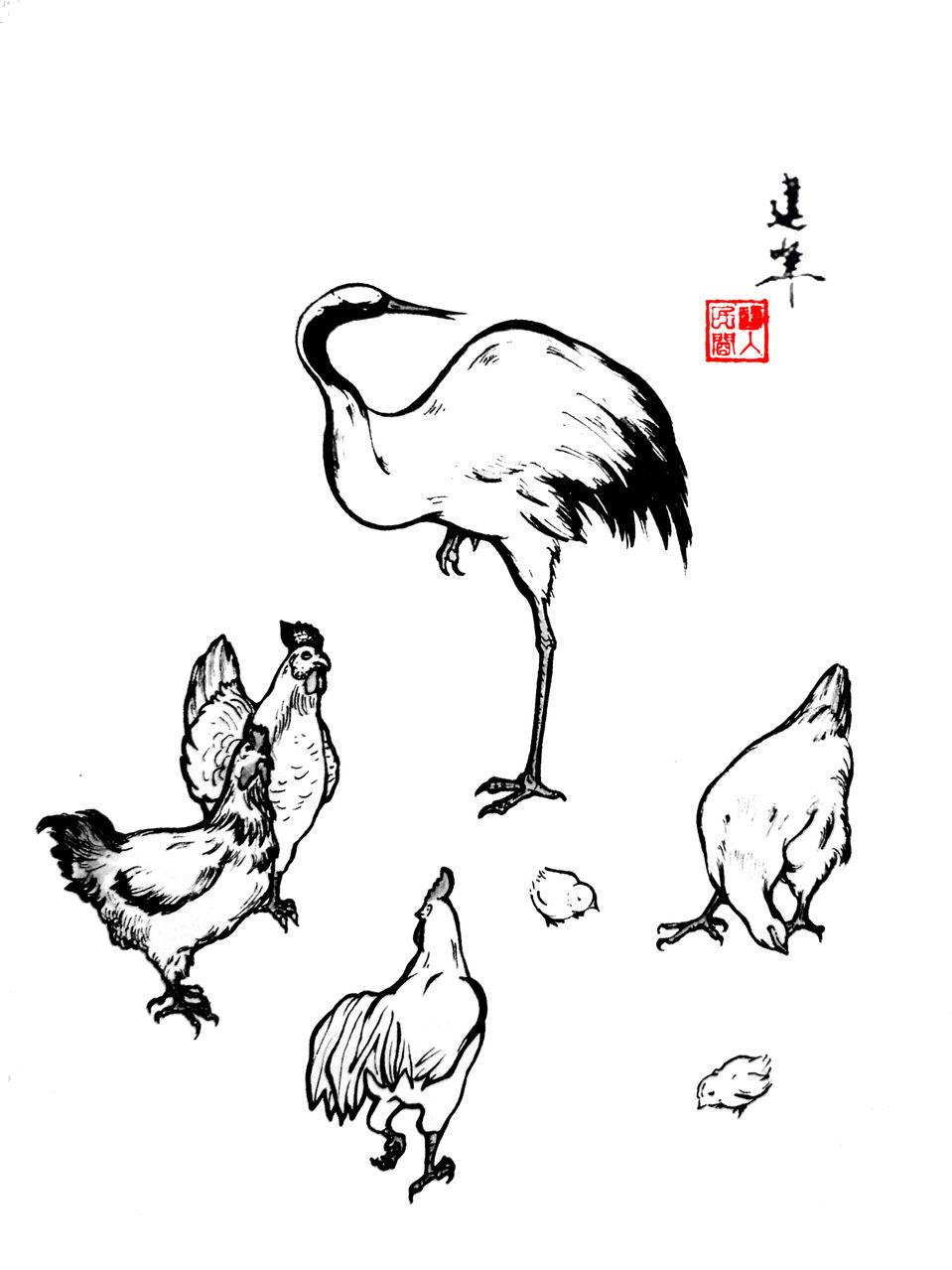 鸟伏什么成语_成语故事简笔画