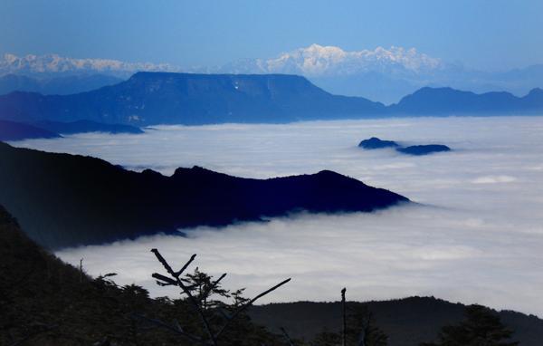 瓦屋山国家森林公园图片