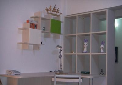 壁衣柜内部合理设计图