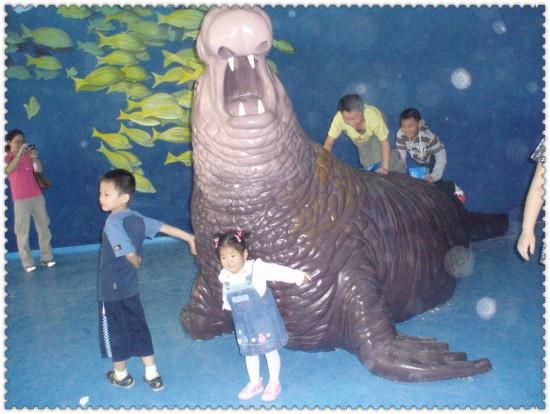 杭州极地海洋公园图片八