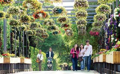 上海植物园