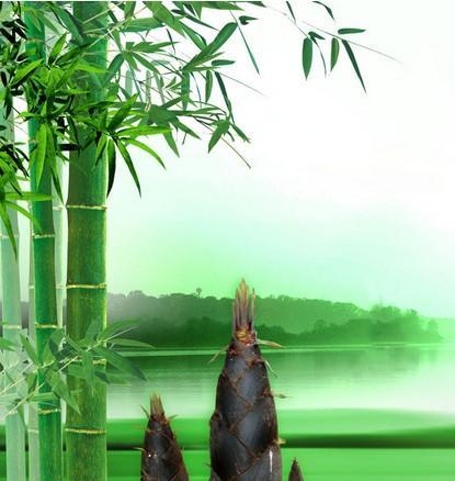 竹类亭子立面图手绘