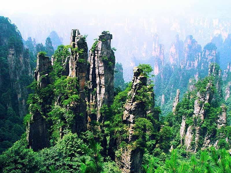 湖南张家界_湖南张家界国家森林公园