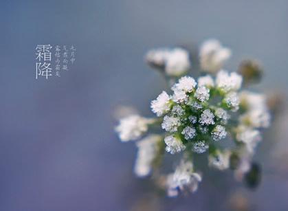 霜降 - 山野人 - syr0012 的博客