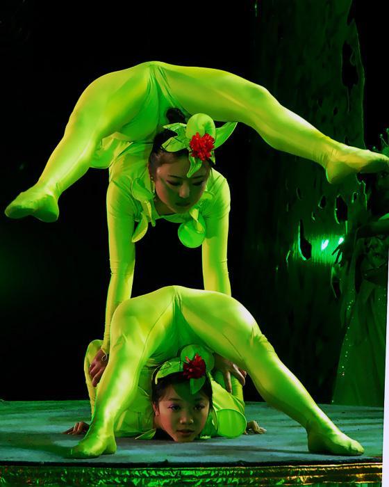 新中国成立后,周恩来总理正式命名为杂技柔术,她与中国的戏剧艺术一样图片