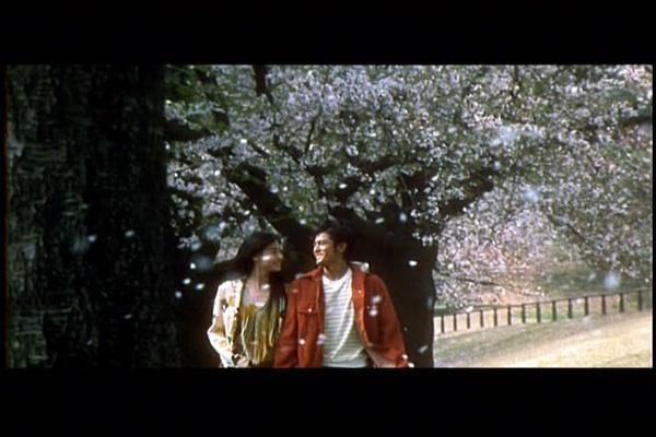 《浪漫樱花》剧照