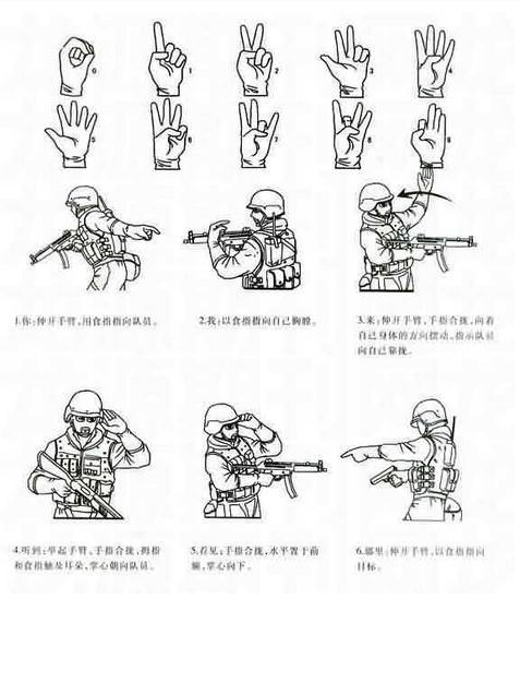 美国手语教程图解