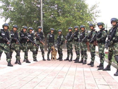 中国人民武装警察部队特种警察学院 搜狗百科图片