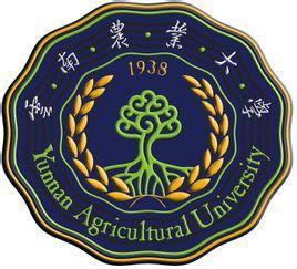 云南农业大学图片