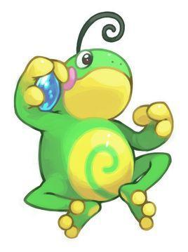 雌性牛蛙解剖手绘图