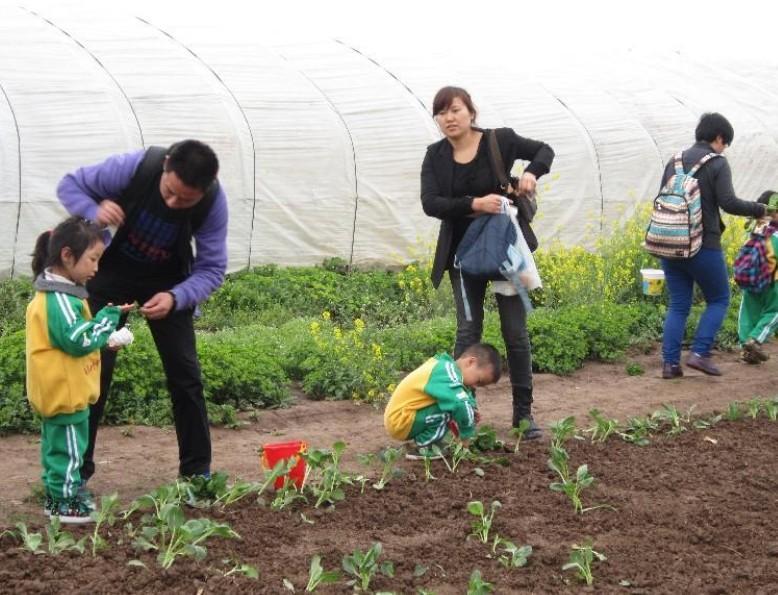 家庭农场图片