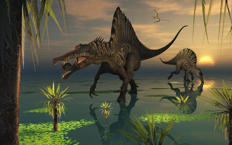 """棘龙(属名:spinosaurus,意思为""""有棘的恐龙"""",是种兽脚亚目模型,生存于小v意思蜥蜴玩具图片"""