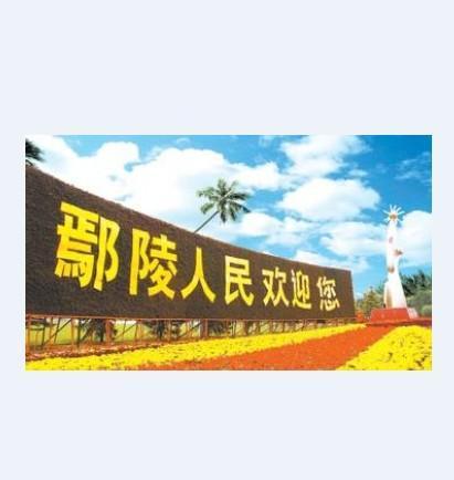 5县委书记宁伯伟2016鄢陵一高录取分数线谁知道啊?银川v县委初中部二中图片