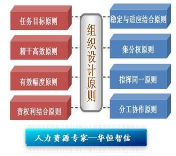 纵向组织结构设计原则