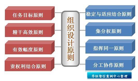 组织优化主要是研究如何合理设计企业内部组织架构