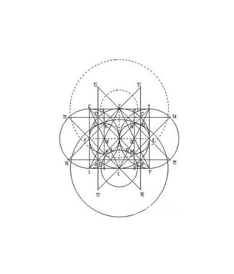 数学结构图怎么画