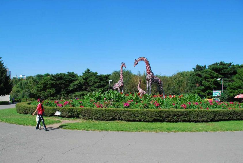 长春动植物公园园内景色
