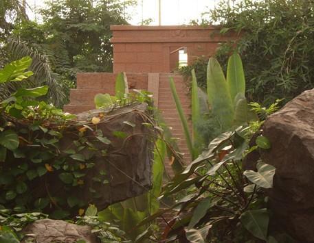 天津热带植物观光园