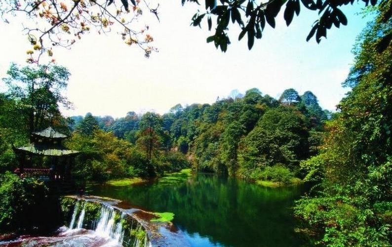 天台山国家森林公园图片