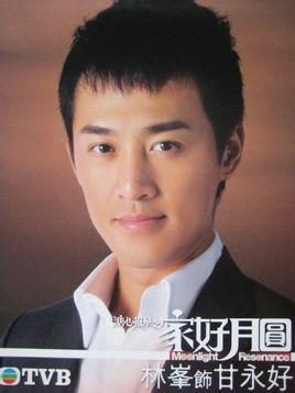 甘永好,电视剧《溏心风暴之家好月圆》男主角之一,由林峯饰演.