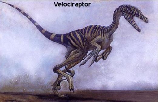 龙2式反坦克导_伶盗龙是最广受一般大众熟悉的恐龙之一,这导因于它们在麦克&middot