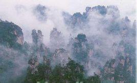 森林公园,砂刀沟北侧1000米处的支流悬崖上,一条溪涧由栖凤山蜿蜒而来图片