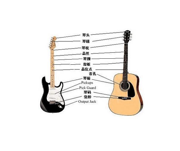 吉他入门_吉他入门(吉他操作)-搜狗百科