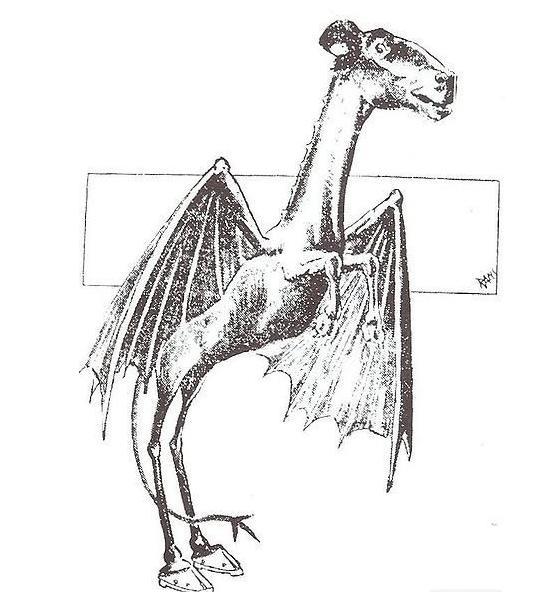 恶魔翅膀黑白手绘画