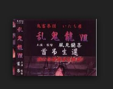 《乱鬼龙》是日本系列电影