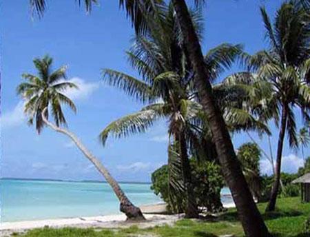 菲尼克斯群岛