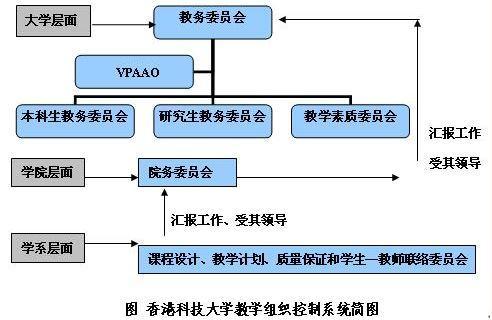 网络型组织结构