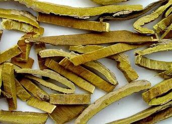 黄柏,为芸香科植物黄皮树或黄檗的干燥树皮.