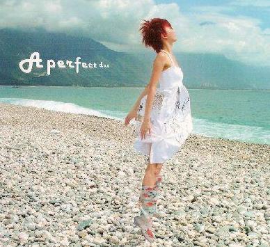 《完美的一天》专辑封面