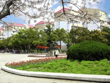 上海交通大学校园一角图片