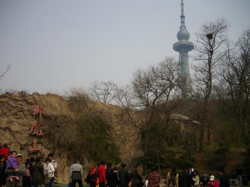 青岛动物园狮虎山