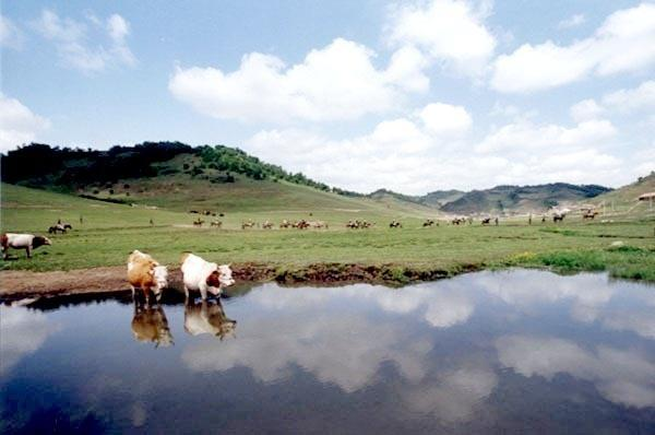 风景区是陕西旅游集团公司与陇县人民政府合作开发建设的自然风景区.