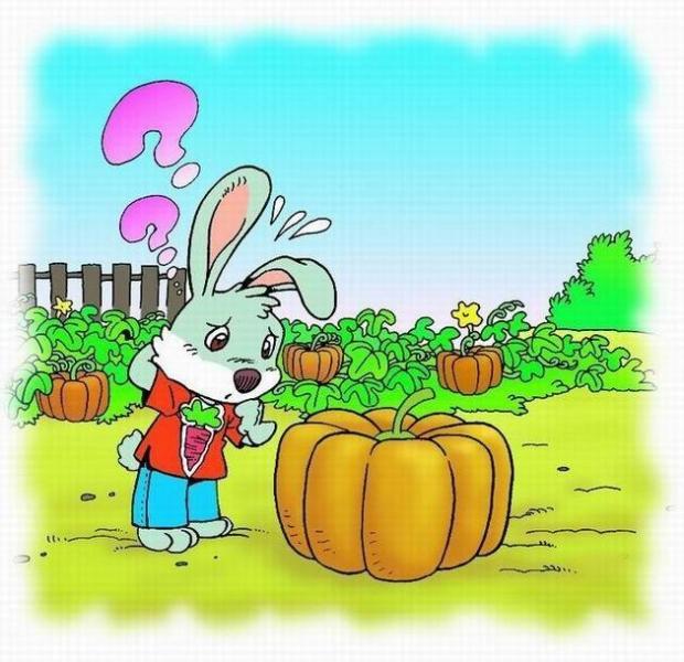 小兔运南瓜图册