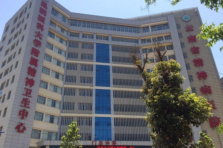 云南省精神病医院建筑设计院的人力资源现状图片