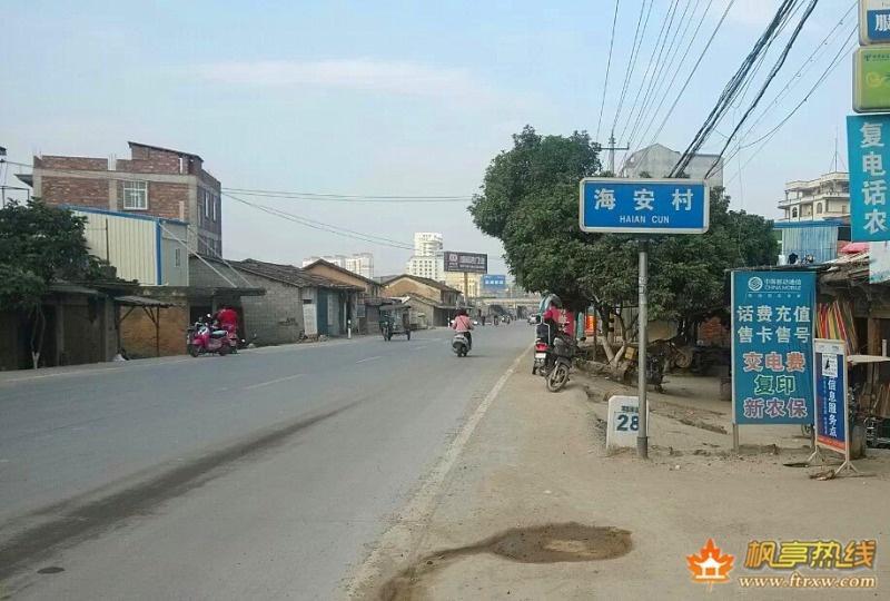 枫亭海安村