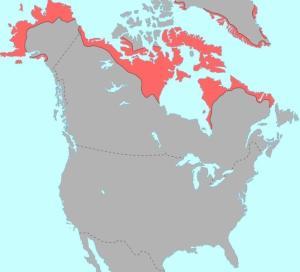 阿拉斯加半岛地理位置