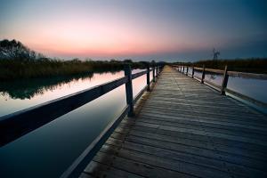 黄河湿地公园图册