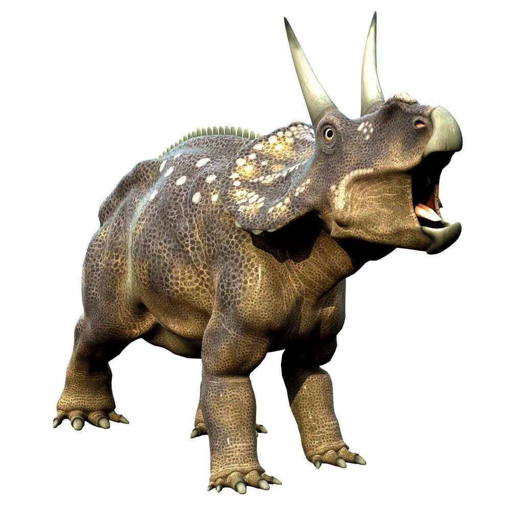 全部版本 最新版本  三角龙是草食性动物,因为它们的头部低矮,所以