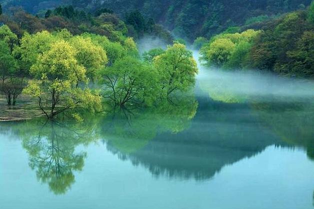 康县阳坝自然风景区