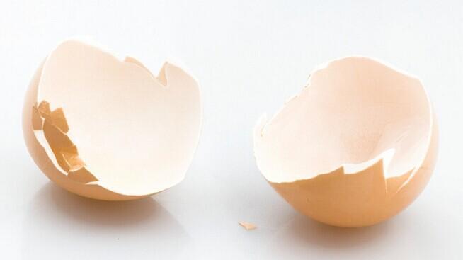 蛋壳(卵生动物的卵外壳) - 搜狗百科