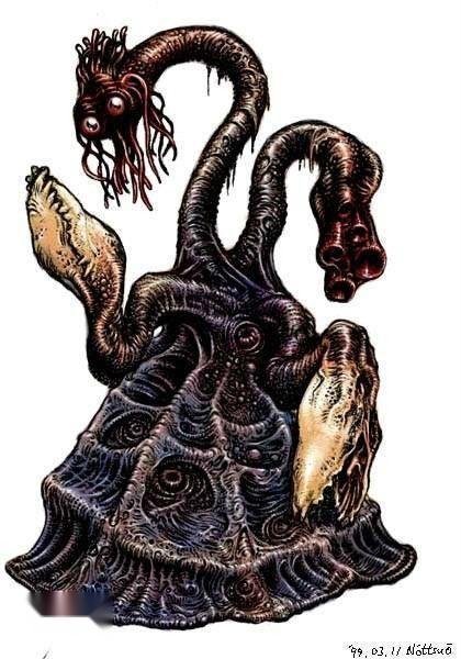 水螅精巢手绘图