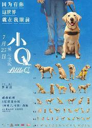 导盲犬小Q_任达华