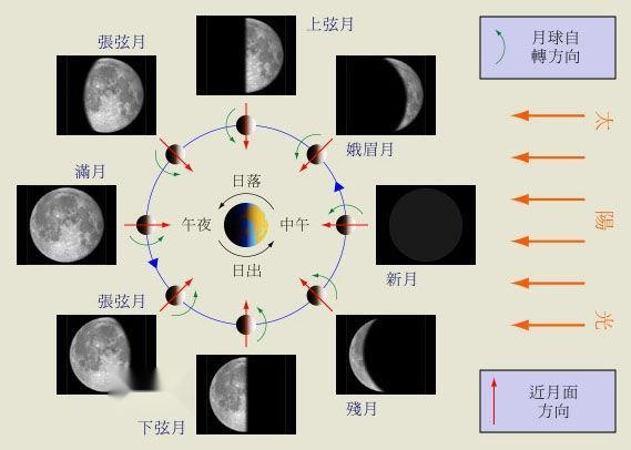 附:月相变化图(注:星空图上方位为上北下南左西右东.)   [2]