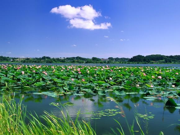 瓦子沟农家旅游风景区  词条标签: 村庄地点 免责声明