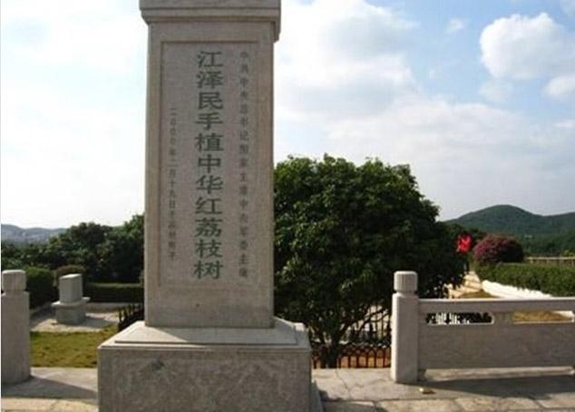 距茂名火车站25公里,湛江飞机场102公里.